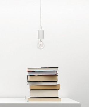 PAN Rod Lampadario Moderno a LED 1 Luce 2 Colori